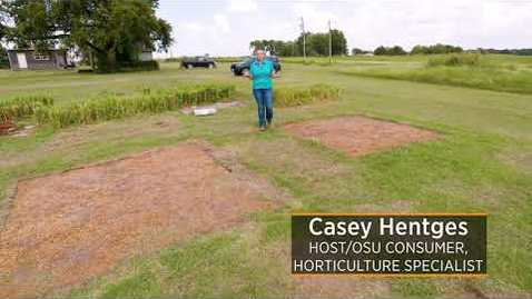 Thumbnail for entry Solarization Update in Eradicating Bermudagrass