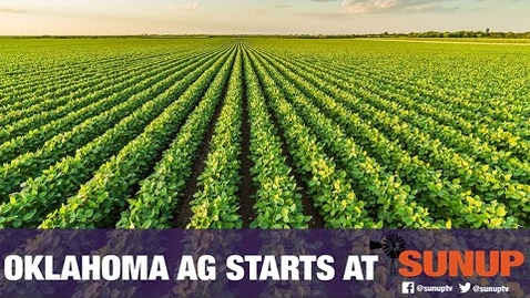 Thumbnail for entry Important Changes to Dicamba Usage (6/20/20)