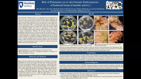 Thumbnail for entry Role of Polyamines on in vitro Somatic Embryogenesis of Industrial hemp (Cannabis sativa L.)