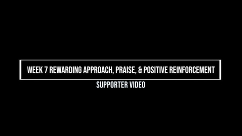 Thumbnail for entry Week 7 Rewarding Approach, Praise, and Positive Reinforcement, Supporter