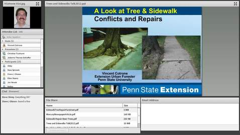 Thumbnail for entry Protecting Trees During Sidewalk Repair edited