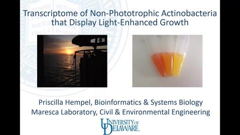 Thumbnail for entry Transcriptome of non-phototrophic Actinobacteria that display light-enhanced growth,  Priscilla Hempel