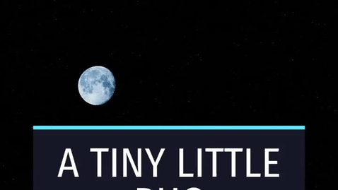 Thumbnail for entry A Tiny Little Bug