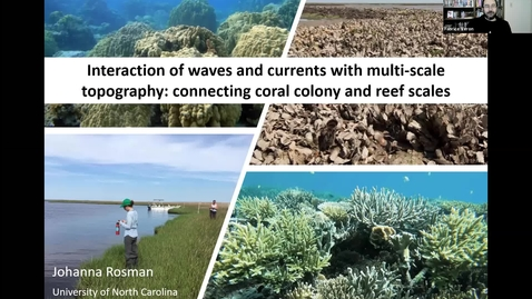 Thumbnail for entry Johanna Rosman Seminar