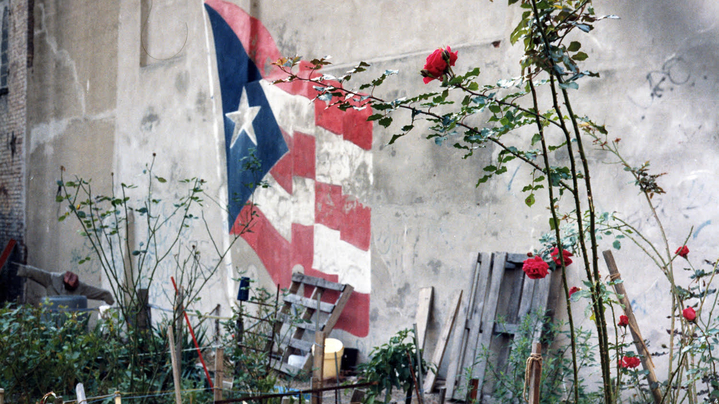 Thumbnail for channel Beyond Traditional:  Puerto Rican Culture Today