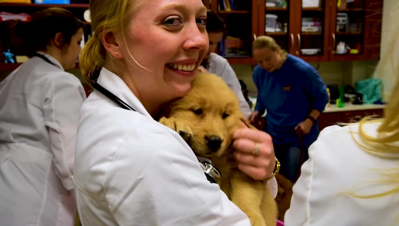 """Virginia-Maryland College of Veterinary Medicine holds the first """"Puppy Palooza"""""""