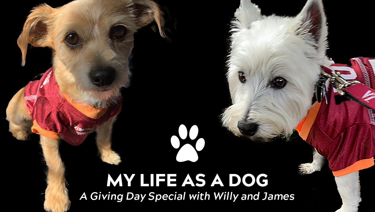 My life as a dog: A Giving Day special with Willy and James