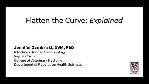 Thumbnail for entry Flatten The Curve: Explained