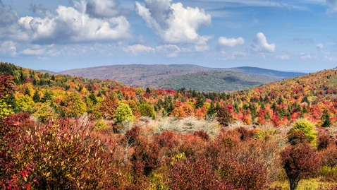 Thumbnail for entry When to expect fall colors to peak