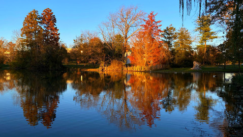 Thumbnail for entry An autumn sunset at the Duck Pond