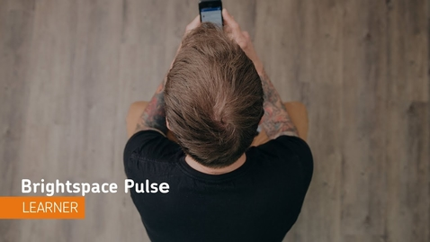 Thumbnail for entry Brightspace Pulse - Navigation