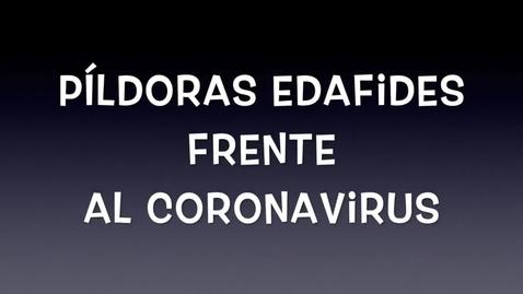 Miniatura para la entrada PÍLDORAS EDAFIDES frente al CORONAVIRUS. No 4. Recomendaciones desde nuestra investigación (II)