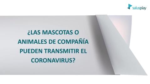 Miniatura para la entrada ¿Las mascotas o animales de compañía transmiten el Coronavirus?