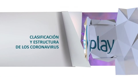 Miniatura para la entrada Tipos de Coronavirus
