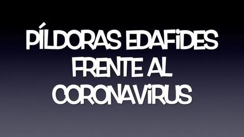 Miniatura para la entrada PÍLDORA EDAFIDES nº2. LA IMPORTANCIA DE ADAPTARSE A LOS CAMBIOS