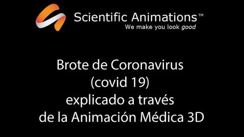 Miniatura para la entrada Brote de Coronavirus (covid 19) explicado a través de la Animación Médica 3D