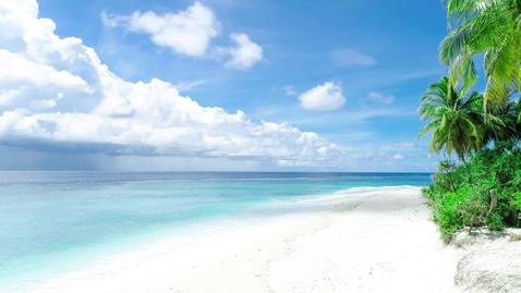 Miniatura para la entrada white-sand-beach-and-palm-trees-1564