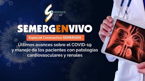 Miniatura para la entrada Últimos avances sobre el COVID19 y manejo de los pacientes con patologías cardiovasculares y renales
