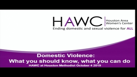 Thumbnail for entry Domestic Violence Presentation with Celinda Guerra (Houston Area Women's Center) 10.4.19