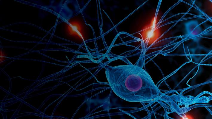 14th Annual Advances in Neurology - Day 1 - 09.10.21