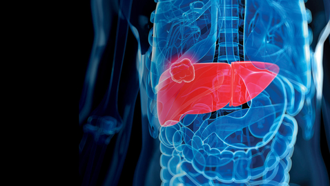 Thumbnail for entry 2021 Emerging Topics in Liver Disease Conference - 08.28.21