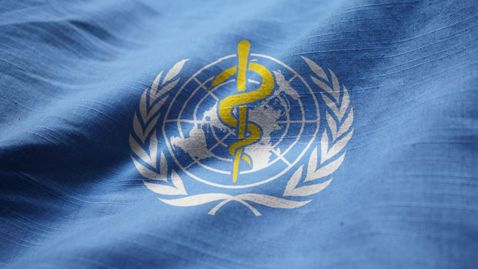 Thumbnail for entry The institutional and organizational role of the WHO and global controversies