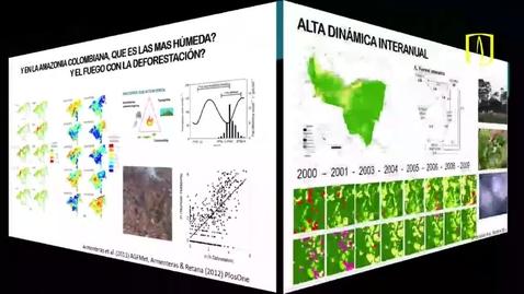 Thumbnail for entry El bosque tropical amazónico
