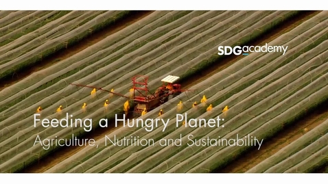 Thumbnail for entry Feeding a Hungry Planet: Agriculture, Nutrition and Sustainability –Trailer