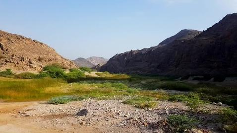 Thumbnail for entry Nature's solutions to flash flooding: a case study from Oman