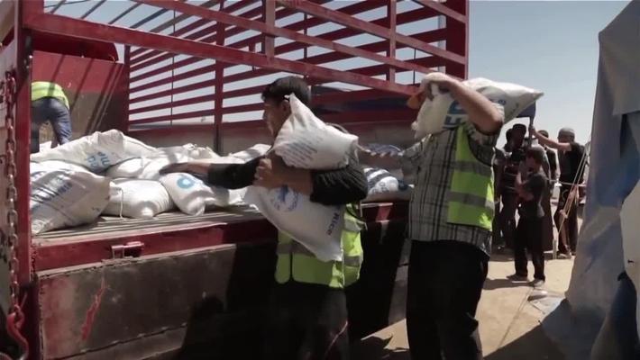 Humanitarian Response to Crisis