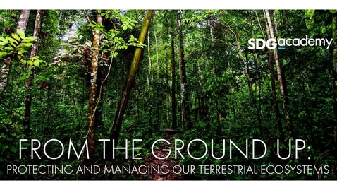 Thumbnail for entry From the Ground Up: Protecting and Managing our Terrestrial Ecosystems - Trailer