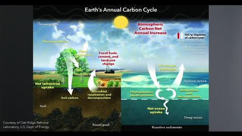 Thumbnail for entry Feedback Mechanisms and the Carbon Cycle