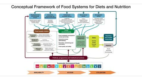 Thumbnail for entry Theoretical Framework of the Mediterranean Approach to Food Systems