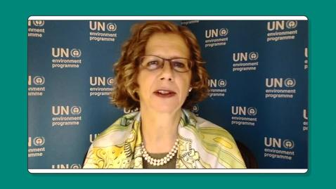 Thumbnail for entry Interview with Inger Andersen, UNEP