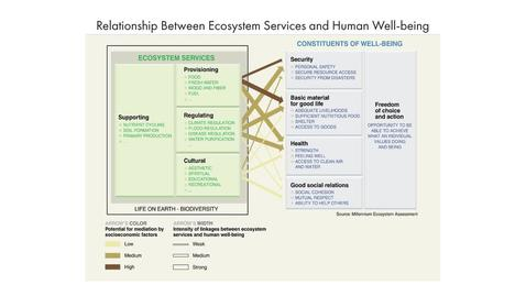 Thumbnail for entry Valuing Ecosystem Services