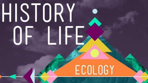 Thumbnail for entry The History of Life on Earth - Crash Course Ecology #1