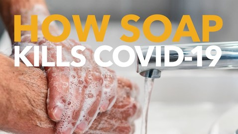 Thumbnail for entry How Soap Kills the Coronavirus