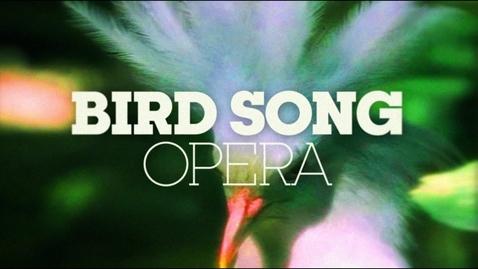 Thumbnail for entry BIRD SONG OPERA