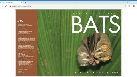 Thumbnail for entry Epic! - Bats