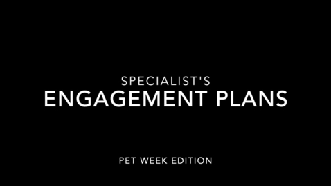 Thumbnail for entry NBE Specialist's Stay Engagement Plans
