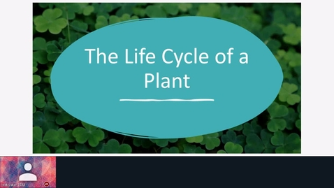Thumbnail for entry life cycle of a plant