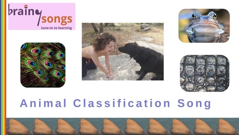 Thumbnail for entry Animal Classification Song | Science Music Video for Kids