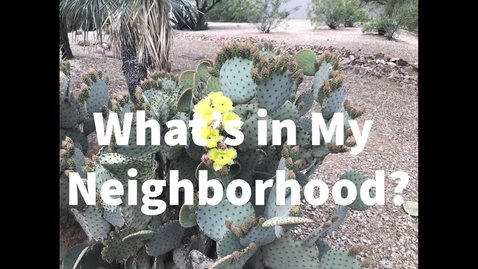 Thumbnail for entry What is in my neighborhood?