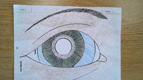 Thumbnail for entry Thurs Eye Review