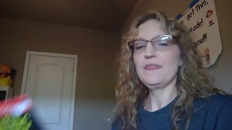 Thumbnail for entry Amazing Bats - Mrs. Brannon