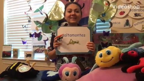 Thumbnail for entry 04/20/20 Numero del dia con Ms. Sorto