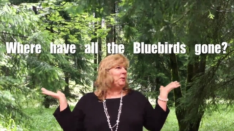 Thumbnail for entry Save the Blue Birds