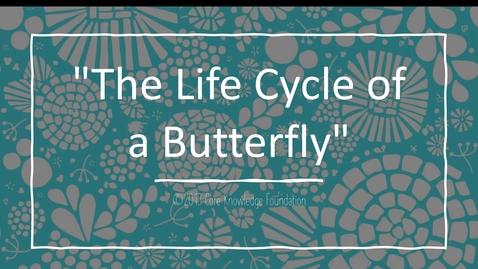 "Thumbnail for entry CKLA Domain 6 Lesson 8  ""The Life Cycle of a Butterfly"""
