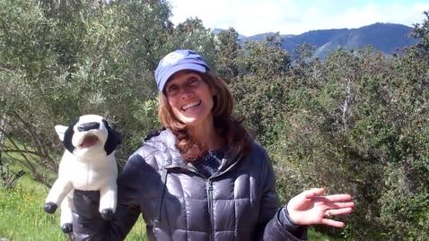Thumbnail for entry Momentos con La Señora Colon #2