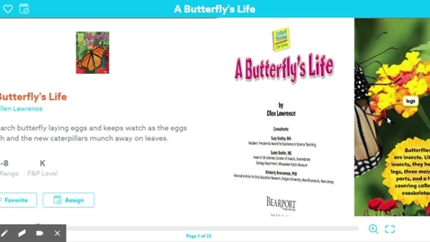 Thumbnail for entry A Butterfly's Life by Ellen Lawrence